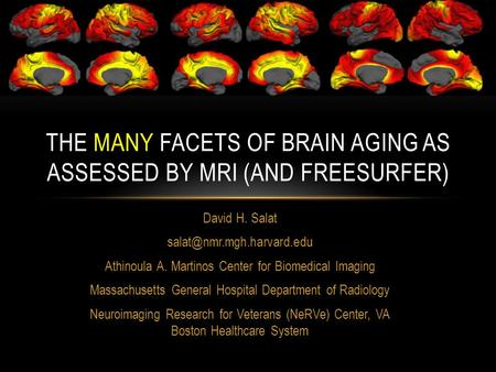 The many facets of brain aging as assessed by mri (and Freesurfer)
