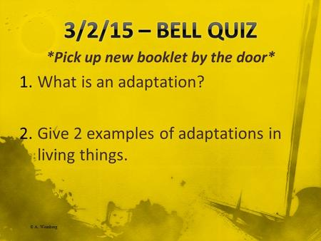 © A. Weinberg *Pick up new booklet by the door* 1.What is an adaptation? 2.Give 2 examples of adaptations in living things.