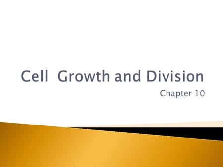 Chapter 10. Limits to cell size  Ability of DNA to control cell functions ◦ Think of only having one set of directions and tools to build an entire.