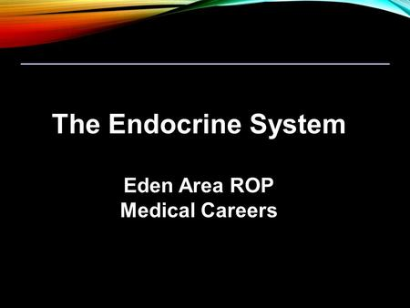 The Endocrine System Eden Area ROP Medical Careers.