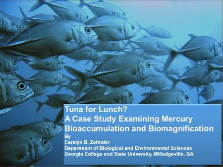 A Case Study Examining Mercury Bioaccumulation and Biomagnification