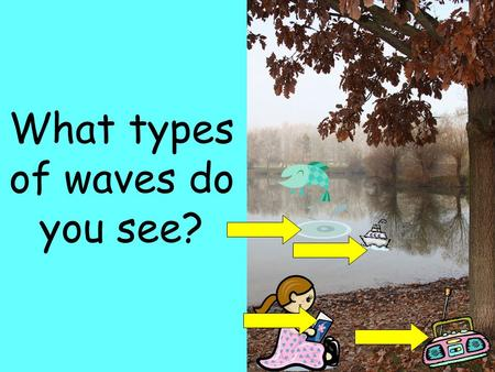 What types of waves do you see?. What is a wave? A disturbance that transfers energy from place to place. –Energy is the ability to do work You are sitting.