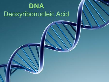 DNA Deoxyribonucleic Acid. Nature vs. Nurture? DNA We know traits are inherited but how are they inherited?
