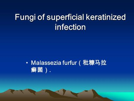 Fungi of superficial keratinized infection Malassezia furfur (秕糠马拉 癣菌).