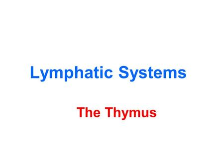 Lymphatic Systems The Thymus. Low mag of the thymus Cortex (C) Medull a (M) C C M M.