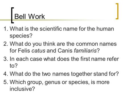 Bell Work 1. What is the scientific name for the human species? 2. What do you think are the common names for Felis catus and Canis familiaris? 3. In each.