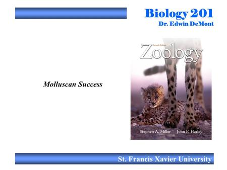 Biology 201 Dr. Edwin DeMont St. Francis Xavier University Molluscan Success.
