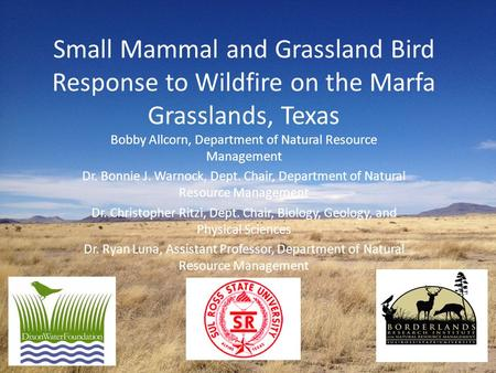 Small Mammal and Grassland Bird Response to Wildfire on the Marfa Grasslands, Texas Bobby Allcorn, Department of Natural Resource Management Dr. Bonnie.