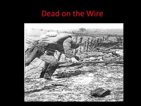 Dead on the Wire. Over the Top No Mans Land-Flanders.