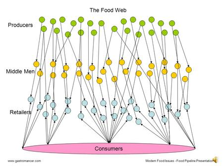 Consumers Retailers Producers Middle Men The Food Web www.gastromancer.comModern Food Issues - Food Pipeline Presentation.