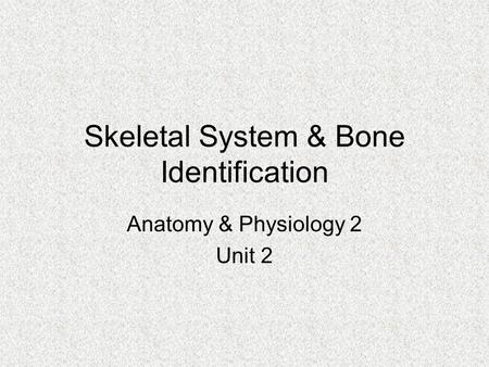 Skeletal System & Bone Identification Anatomy & Physiology 2 Unit 2.
