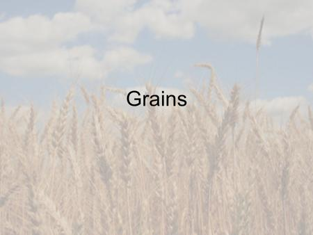 Grains. Quick Review Thinking back to the movie, during the Great Depression, what did the government require mills to do? Enrich or fortify grain products.