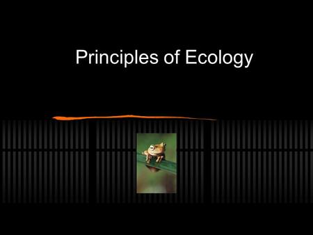 Principles of Ecology. Ecosystem An ecosystem is a natural unit consisting of: Plants Animals micro-organisms physical factors.
