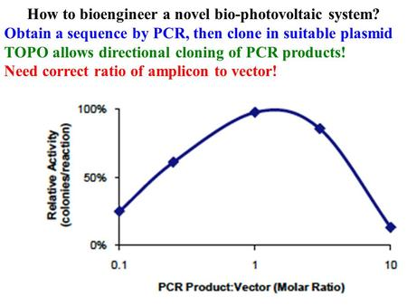 How to bioengineer a novel bio-photovoltaic system? Obtain a sequence by PCR, then clone in suitable plasmid TOPO allows directional cloning of PCR products!