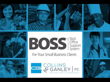 What is BOSS? Back Office Support System What is BOSS? Back Office Support System All-inclusive small business accounting package: –Bill paying –Checkbook.