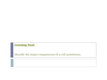 Learning Goal: Identify the major components of a cell membrane.