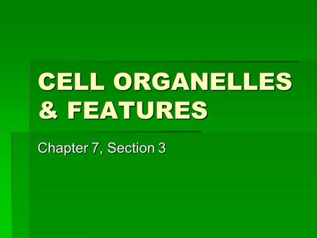 CELL ORGANELLES & FEATURES Chapter 7, Section 3. Think, Pair, Share 1.Name at least 3 organs in your body and body and how they help you survive (Fill.