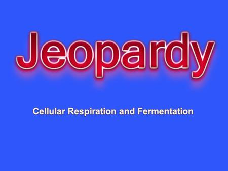 Cell respiration A Cell respiration B Fermentation Compare and contrast P/CR 10100101001010010100 20200202002020020200 30300303003030030300 40400404004040040400.