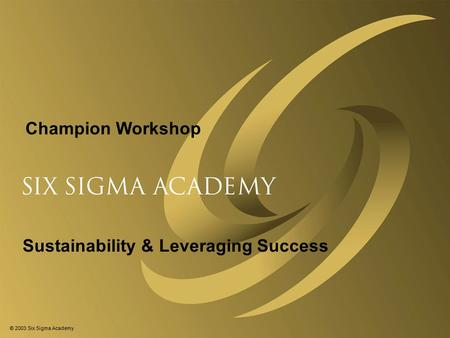 © 2003 Six Sigma Academy Sustainability & Leveraging Success Champion Workshop.