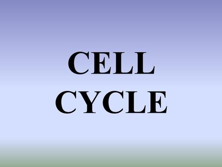 CELL CYCLE How many cells do we begin with? 2 How do we get more?