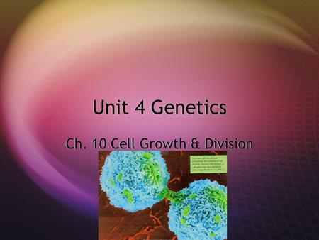 Unit 4 Genetics Ch. 10 Cell Growth & Division. Cell Growth  In most cases, living things grow by producing more cells  The cells of an adult animal.