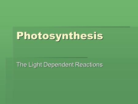 Photosynthesis The Light Dependent Reactions. Formula 6 CO 2 + 6 H 2 O + Light Energy [CH 2 O] + 6O 2 Chlorophyll.
