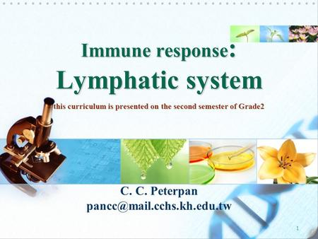 1 C. C. Peterpan Immune response : Lymphatic system this curriculum is presented on the second semester of Grade2.