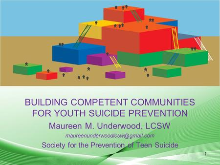 BUILDING COMPETENT COMMUNITIES FOR YOUTH SUICIDE PREVENTION Maureen M. Underwood, LCSW Society for the Prevention of Teen.