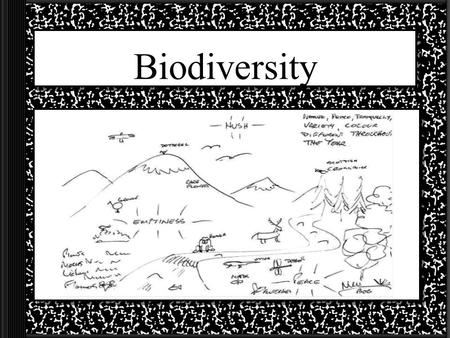 Biodiversity What is Biodiversity? Biodiversity is the rich variety of life on Earth. –There are 3 kinds of biodiversity Variety of genes –Poodles, beagles,