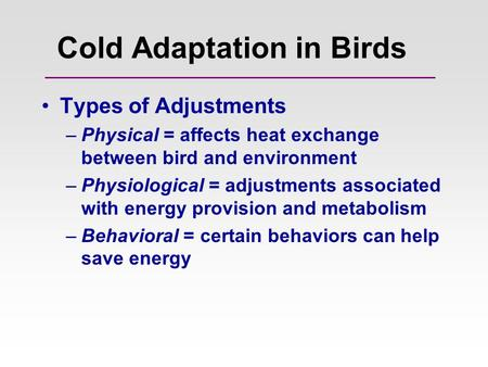 Cold Adaptation in Birds Types of Adjustments –Physical = affects heat exchange between bird and environment –Physiological = adjustments associated with.
