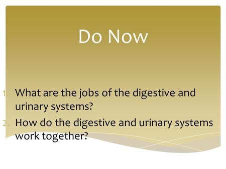 Do Now 1.What are the jobs of the digestive and urinary systems? 2.How do the digestive and urinary systems work together?
