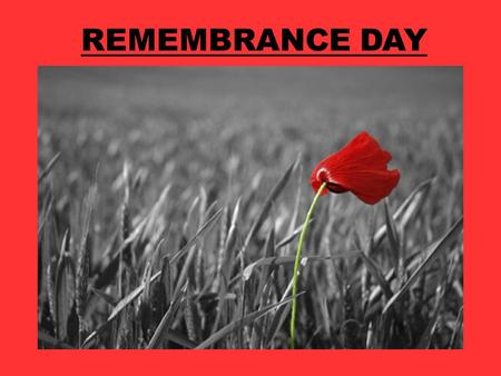 REMEMBRANCE DAY. What are we remembering on Remembrance Day?