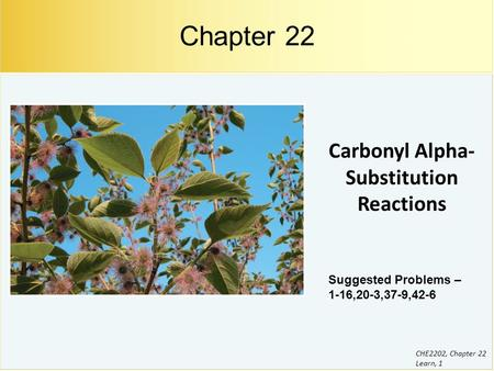 Carbonyl Alpha-Substitution Reactions