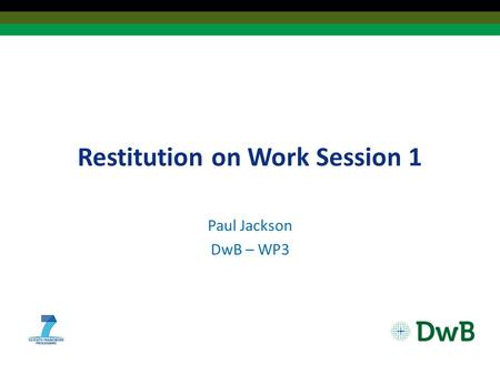Restitution on Work Session 1 Paul Jackson DwB – WP3.