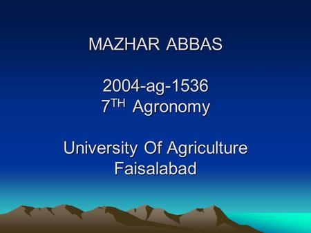 MAZHAR ABBAS 2004-ag-1536 7 TH Agronomy University Of Agriculture Faisalabad.