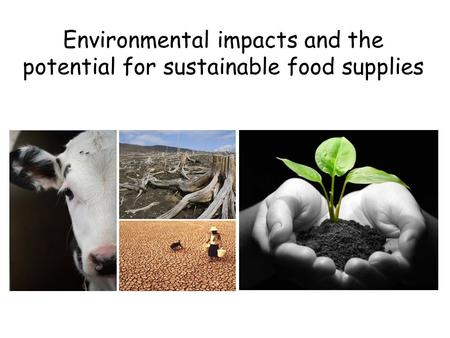 Environmental impacts and the potential for sustainable food supplies.