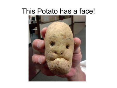 This Potato has a face!. Questions to Check Understanding What is a saturated compound? What is an unsaturated compound? Describe the differences between.