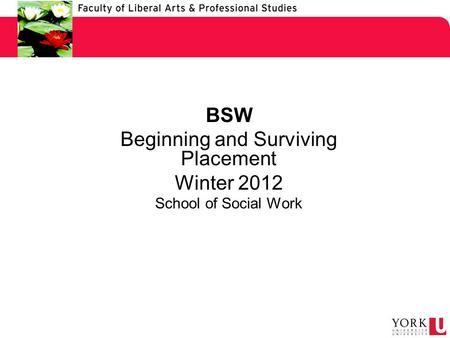 BSW Beginning and Surviving Placement Winter 2012 School of Social Work.