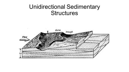 Unidirectional Sedimentary Structures