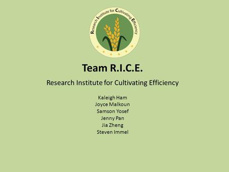 Team R.I.C.E. Research Institute for Cultivating Efficiency Kaleigh Ham Joyce Malkoun Samson Yosef Jenny Pan Jia Zheng Steven Immel.