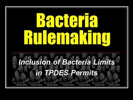 Bacteria Rulemaking Inclusion of Bacteria Limits in TPDES Permits.