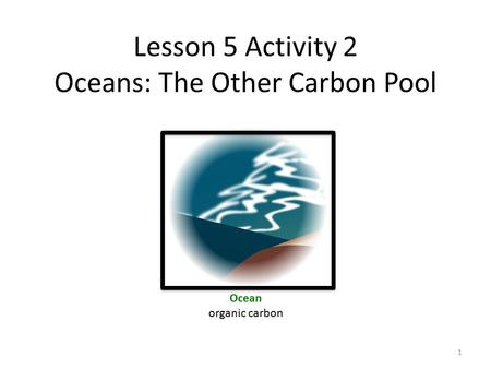 Lesson 5 Activity 2 Oceans: The Other Carbon Pool