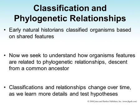 Classification and Phylogenetic Relationships