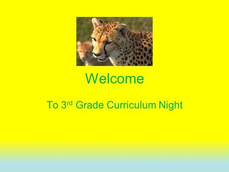 Welcome To 3 rd Grade Curriculum Night. TEKS  Planning- All 3 rd grade teachers plan together to ensure consistency across the grade level.  3 rd grade.