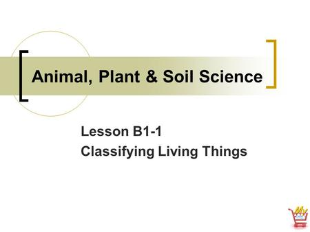 Animal, Plant & Soil Science Lesson B1-1 Classifying Living Things.