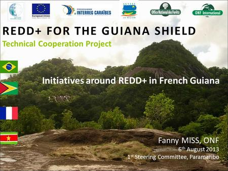 REDD+ FOR THE GUIANA SHIELD Technical Cooperation Project Initiatives around REDD+ in French Guiana Fanny MISS, ONF 6 th August 2013 1 st Steering Committee,