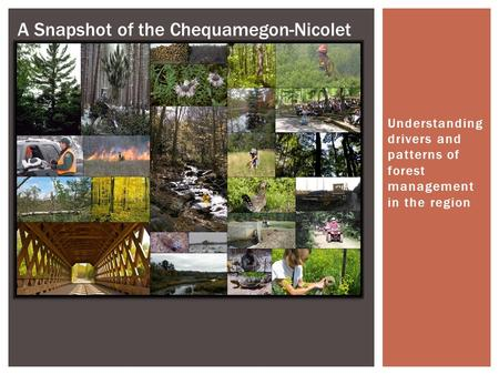 Understanding drivers and patterns of forest management in the region * A Snapshot of the Chequamegon-Nicolet.