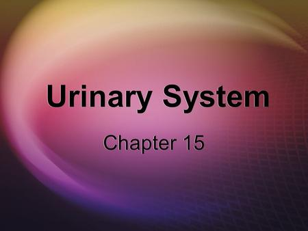 Urinary System Chapter 15. Urinary System Kidneys  Location  Two kidneys — one on each side of the lumbar region  Functions  Filter the blood and.