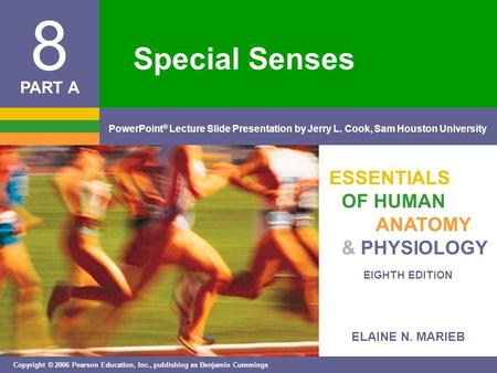 ELAINE N. MARIEB EIGHTH EDITION 8 Copyright © 2006 Pearson Education, Inc., publishing as Benjamin Cummings PowerPoint ® Lecture Slide Presentation by.