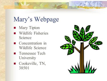 Mary's Webpage Mary Tipton Wildlife Fisheries Science Concentration in Wildlife Science Tennessee Tech University Cookeville, TN, 38501.